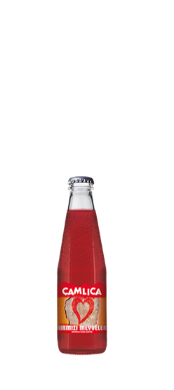 Çamlıca Red Fruits 200ml