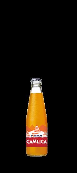 Çamlıca Portakal 200ml