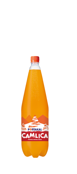 Çamlıca Orange 1L