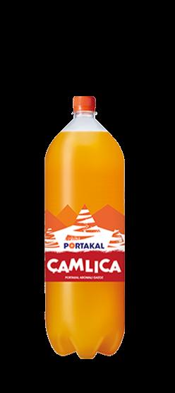 Çamlıca Portakal 2,5L