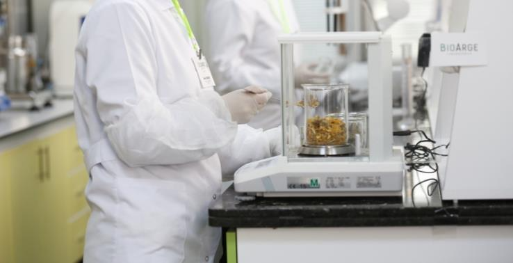 Organic Synthesis and Plant  Extraction Laboratory