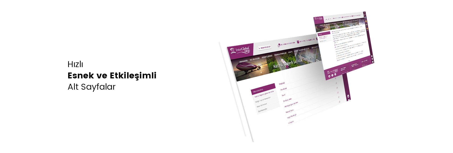 İnter Global Kargo Web Site Responsive